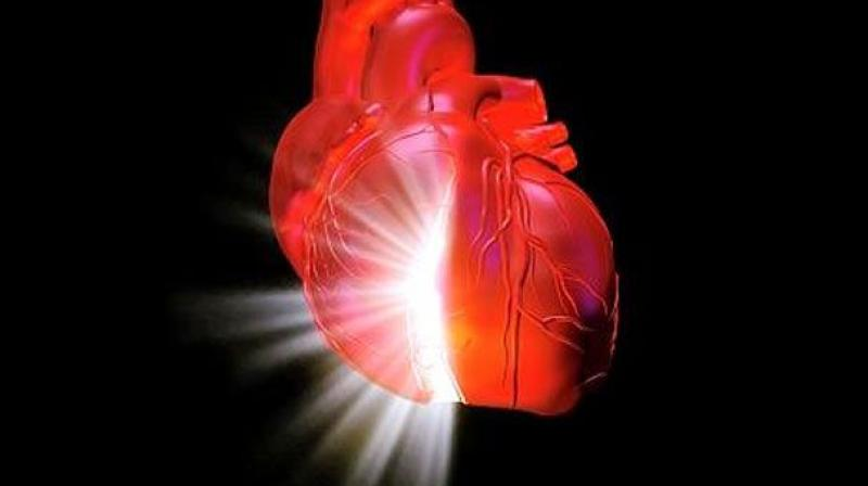 Can Your Heart Predict the Future?